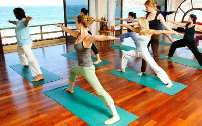 Yoga & Meditation1404