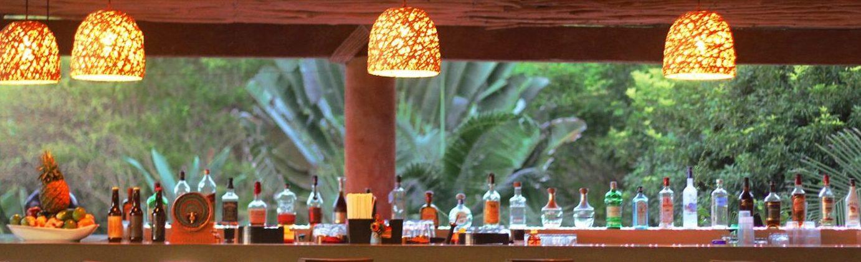 La Palapa Bar